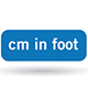cm in foot on blue button