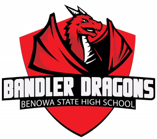 Bandler Dragons logo