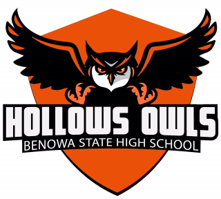 Hollows Owls logo